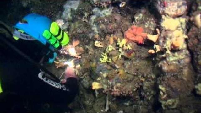 DiscoverKynouria.gr - Κατάδυση στο Αρκαδικό Χωριό (Diving)